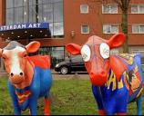 Tulip Inn Amsterdam Art